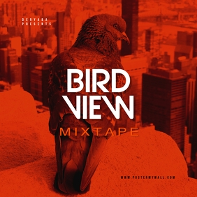 Bird View Orange CD Mixtape Cover Template