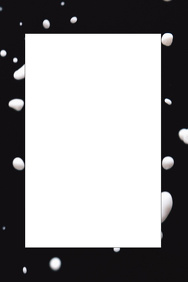 Black and White Party Prop Frame