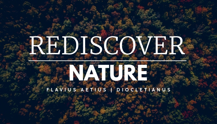 blog header tree forest background template