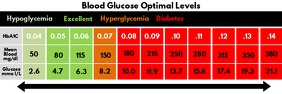Blood Glucose Level Scale Template Cartel de 2 × 6 pulg.