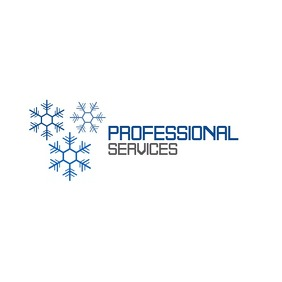 blue and grey professional services Logo template