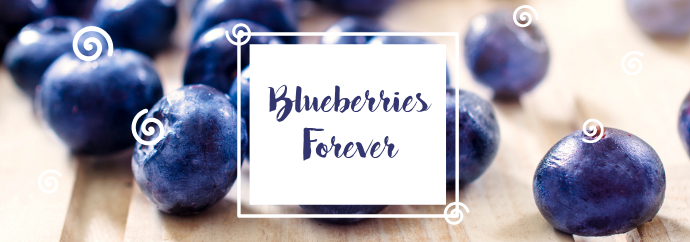 Blue Berries Forever Tumblr Banner template