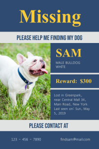 picture regarding Printable Lost Pet Flyer called Generate Dropped Canine Flyers within Minutes PosterMyWall