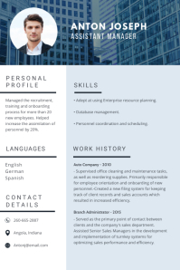 Blue Sales Manager Professional Resume CV