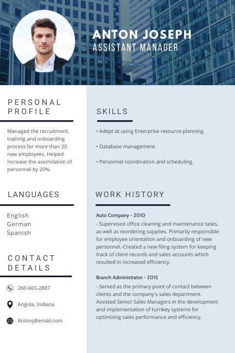 Blue Sales Manager Professional Resume CV