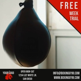 Boxing Gym Speed Bag Video