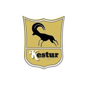 Brand Template Logo