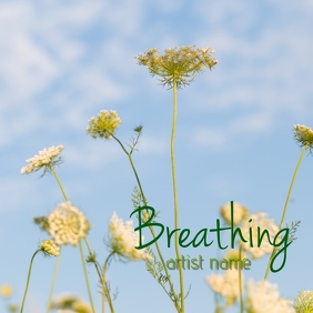 Breathing album art