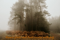 brown grass and trees coverd with fog Cartaz template