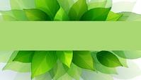 Business Card green leaf pastel