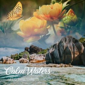 Calm waters Album cover