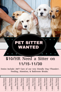 Pet Sitter Poster template
