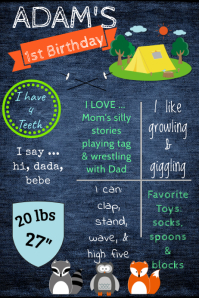 Camp Birthday Poster