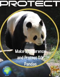 Campaign Posters Panda