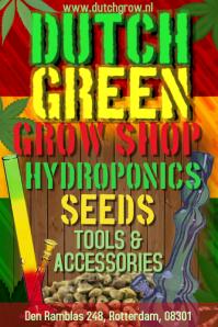 Cannabis Grow Shop Flyer Template
