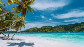 Caribbean Beach - Zoom Background Templates Presentazione (16:9)