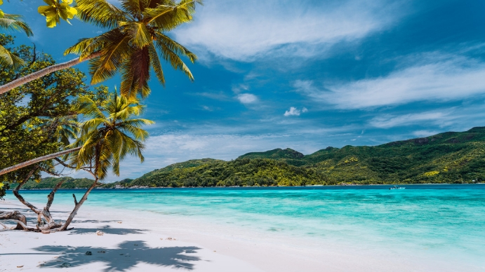 Zoom Background On The Beach    15 Best Zoom Backgrounds Inspired By Vacation Rentals Vacasa