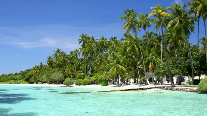 Caribbean Beach Zoom Virtual Background Video Pagtatanghal (16:9) template
