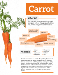 Carrot Facts Infographic