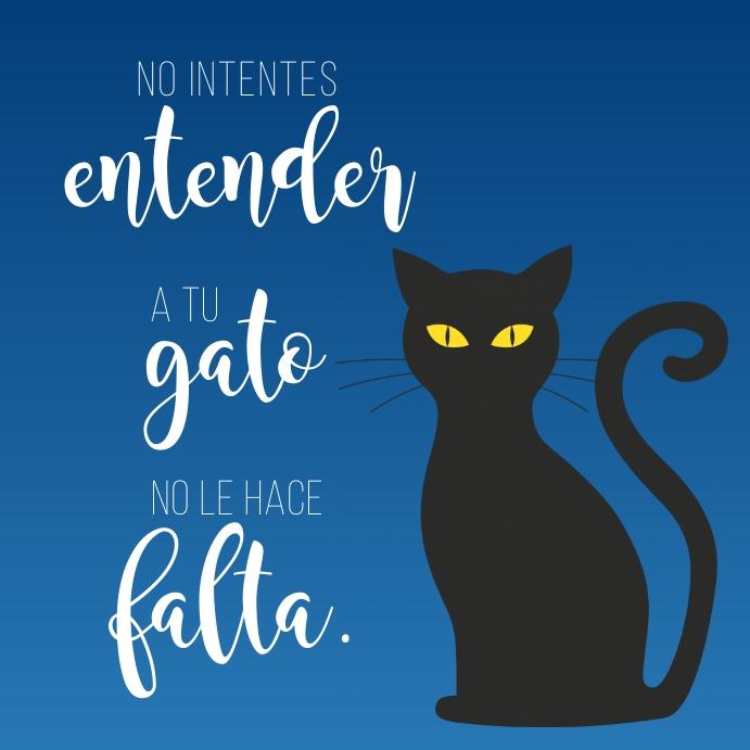 cartel divertido de diseño de gato template
