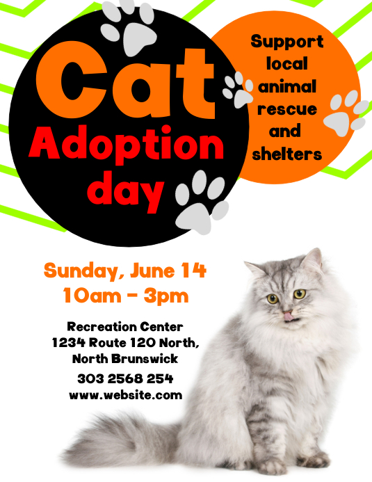Cat Adoption Day Flyer