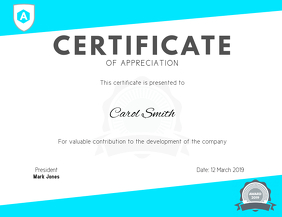 Certificate of Appreciation Template Pamflet (VSA Brief)