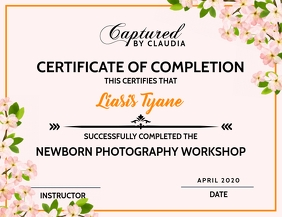 Certificate Photography Workshop Template