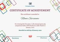 Certificate211 A4 template