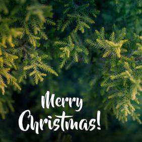 Christmas Card 01