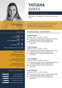Clean Professional Resume Remplate, Resume CV A4 template