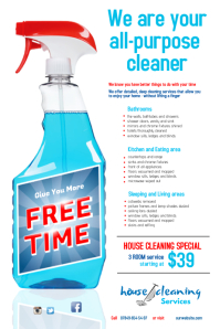 Cleaning Services Flyer