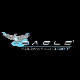 CLOUD IT Eagle Logo