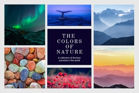 Colorful Landscape Nature Collage