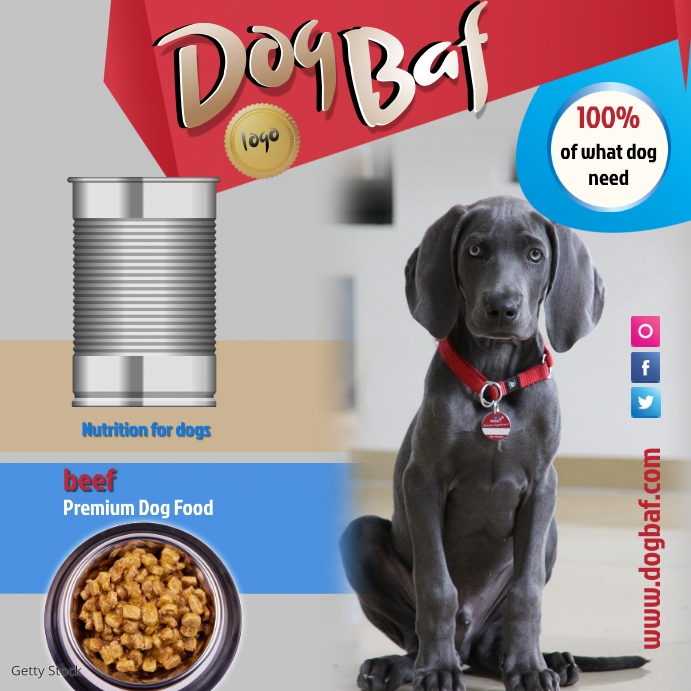 Copy of dogfood1