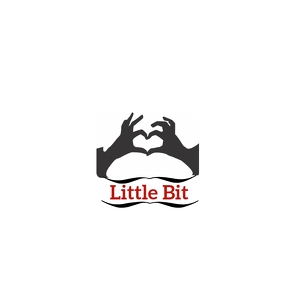 Copy of Little Bit Design