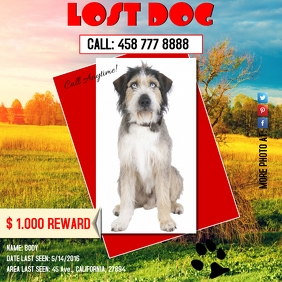 Copy of lostdog2