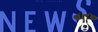 of mail header newsletter template do E-poskop