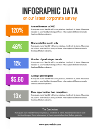 Corporate Infographic Colorful Flyer Ulotka (US Letter) template