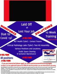 Corporate Training Opportunity Flyer