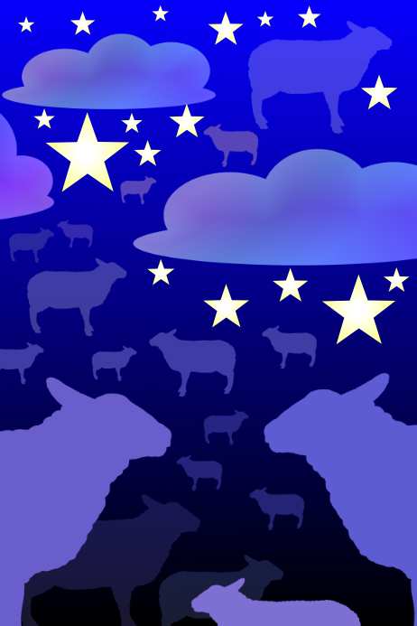 counting sheep - stars and clouds - sky at night