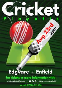 Cricket Club Schedule Poster