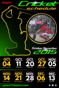 Cricket Team Game Schedule Poster