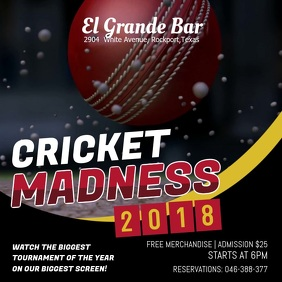 Cricket Viewing Party Video Instagram Ad Template