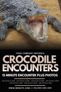 Crocodile Encounters Poster โปสเตอร์ template