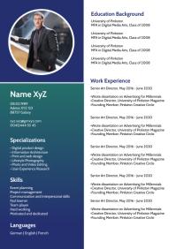 Curriculum vitae Lebenslauf Skills Card CV