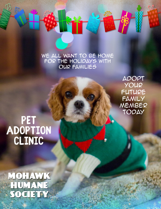 Customze this Holiday Pet adoption Flyer template