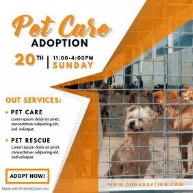 Cute Pet Adoption Service Video