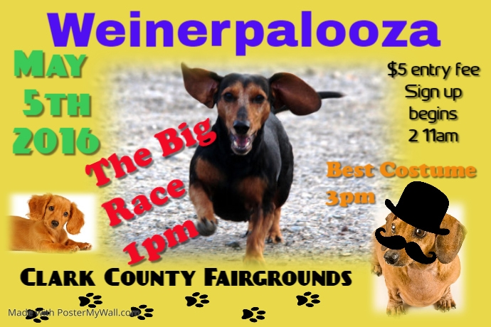 Dachshund Race and Costume Contest