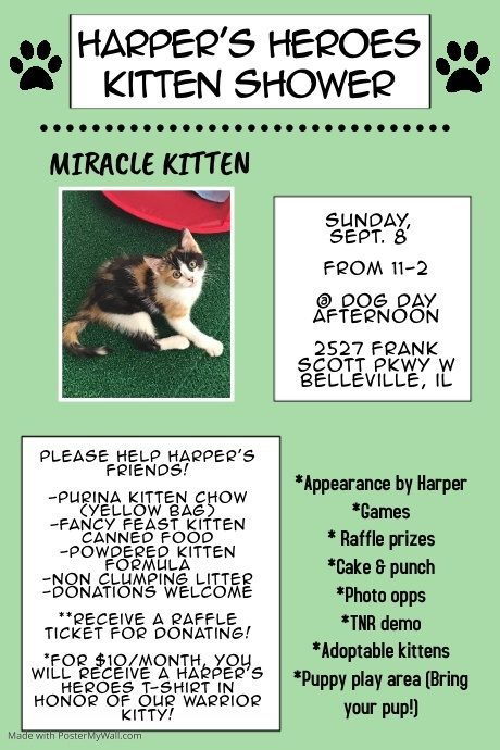 Harper's Heroes Kitten Shower