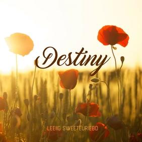 Destiny Album cover template